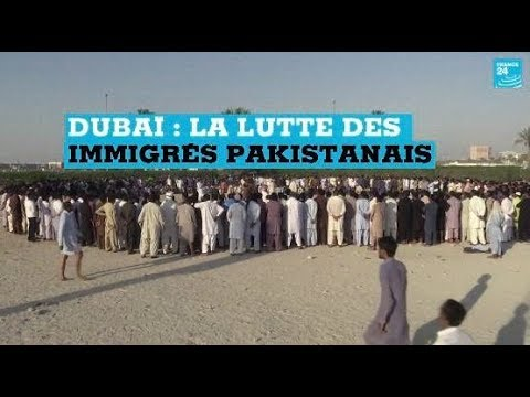 Les Pakistanais de Dubaï pratiquent la lutte traditionnelle pour se divertir
