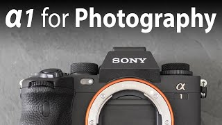 Sony Alpha 1 PHOTOGRAPHY review (res, DR, ISO, RAW, AF, 30fps) 2 months