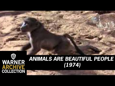 Animals Are Beautiful People (Preview Clip)