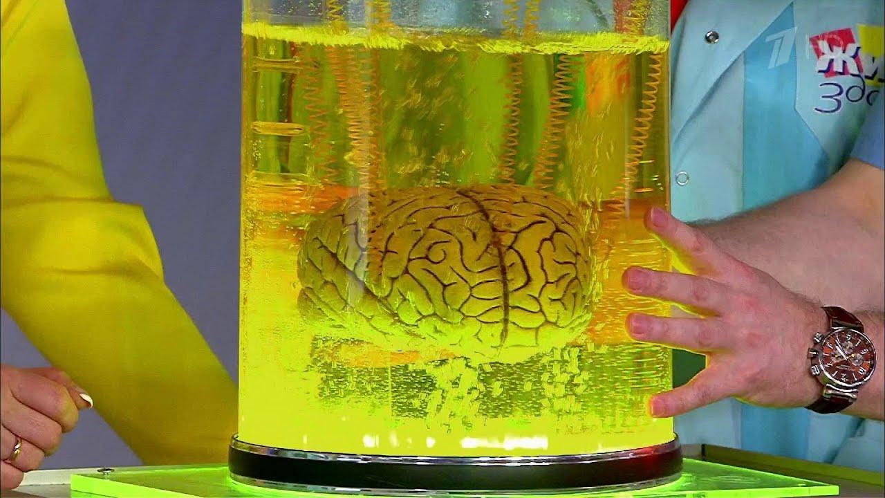 Жить здорово! Сотрясение мозга у детей и взрослых. (07.06.2016)