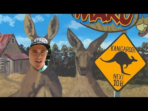 Up Close & Personal With Some Australian Wildlife