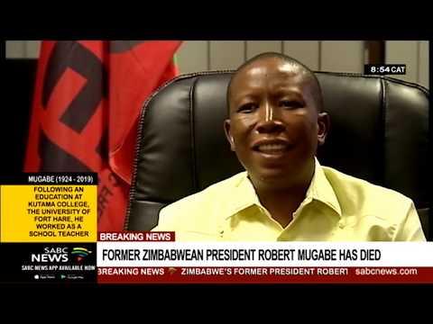 Robert Mugabe a Pan-Africanist