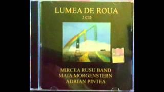 Adrian Pintea -  Casa stramba