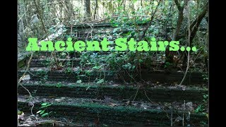 GRAND STAIRCASE IN THE WOODS -  GHOST STAIRS