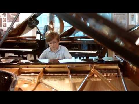 C. Bechstein Centrum Berlin - Klaviere und Flügel der Meisterklasse