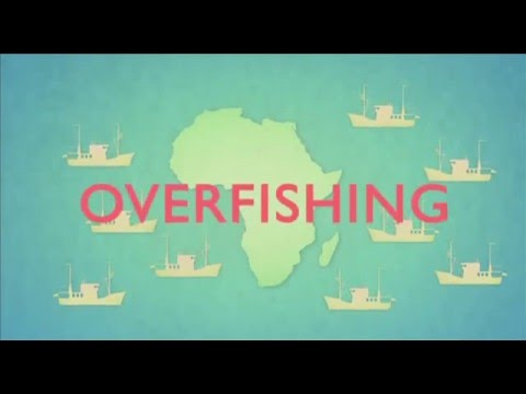 Animation: the state of fishing in Africa