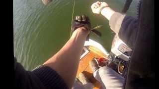 Schleppfischen am Schiffenensee