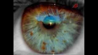 Тело человека. Глаз (Oculus). Зрение.