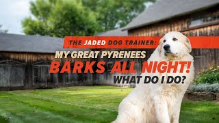 My Great Pyrenees Barks All Night Long  The Jaded Dog Trainer