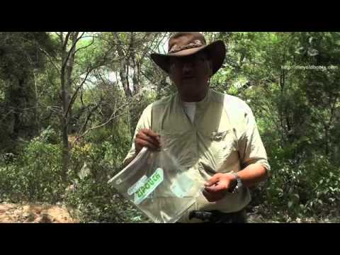 How to store water in the wilderness