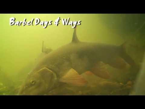 Barbel Days & Ways - The Raft
