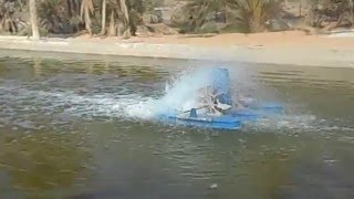HOW TO START FISH FARMING IN DESERT .