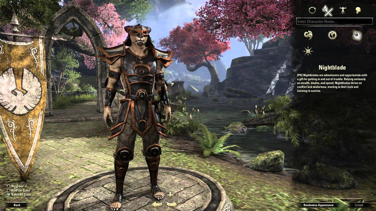 Dark Elf Elder Scrolls Online Build