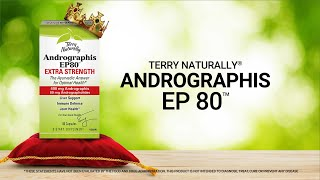 Andrographis EP80™ | Terry Naturally®