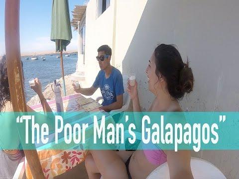 The Poor Man's Galapagos - Paracas, Peru