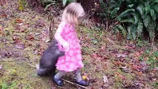 女の子から1ミリたりとも離れたくないヤマアラシ(動画)