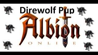 [Albion Online] - Onde conseguir Direwolf Pup / Lobinho Vil