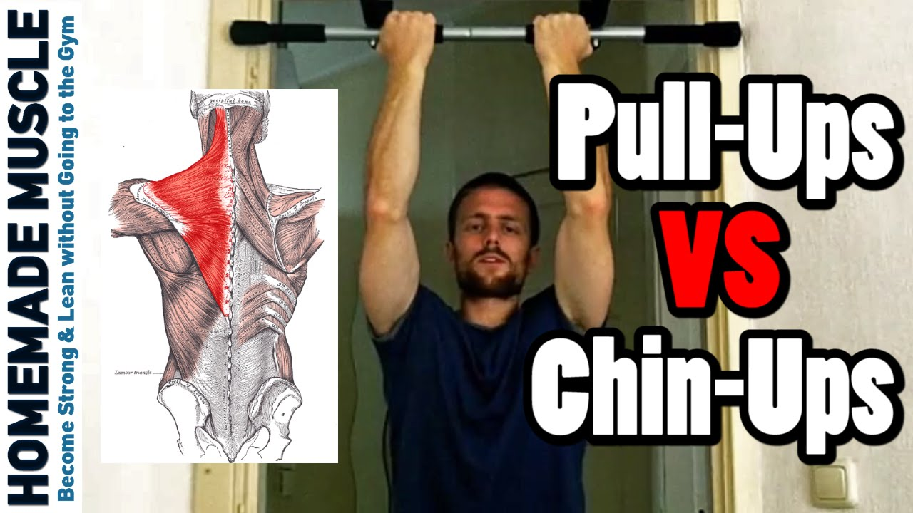 Chin-ups VS Pull-ups (Differences in Muscle activation and ...