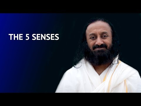 Importance of controlling the 5 senses | Talk by Gurudev Sri Sri Ravi Shankar