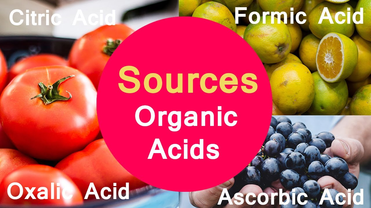 Sources of Organic Acids