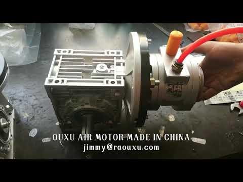 Vane air motor working video