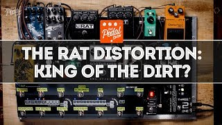 The ProCo RAT Distortion & RAT-Alikes: King Of The Dirt Pedals? That Pedal Show