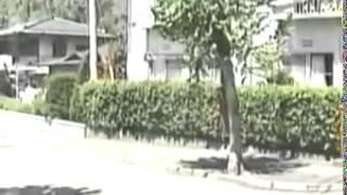 imbestigador 2004 filipijin pilipinos in japan [Full Episode]