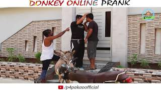 DONKEY ONLINE PRANK   By Nadir Ali & Asim Sanata In   P4 Pakao   2018