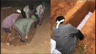 Chuyện lạ có thật: Bò đẻ ra người gây xôn xao ở Thái Lan