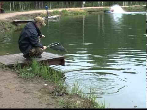 видео про рыбалку судак