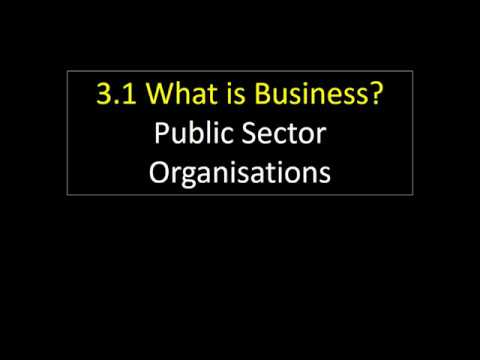 3.1 11 Public Sector Organisations