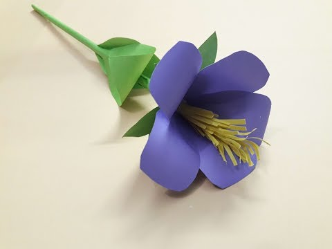 DIY Paper Hibiscus/Hibiscus  flower With Paper - paper China Rose flower craft