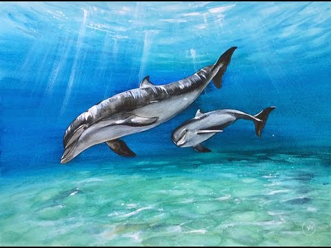 11f05f19717 Watercolor Dolphins Painting Demonstration - YouTube