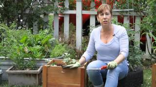 How To Plant Wood Containers In A Garden : Garden Space