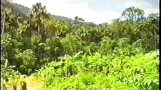 Repeat youtube video Yanomami 1of4 GCSE Humanities