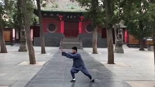 Комплекс Дракон (Long Xin Yi Lui) стиля Shaolin Xin Yi Ba