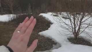 видео Усадьба Северный Склон