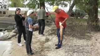 Улов Рыбная ловля Ловля карпа Карп в Днепре Супер улов