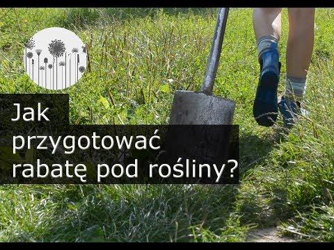 Z Mojego Ogrodu. Jak prawidłowo przygotować grunt pod nasadzenia roślin.