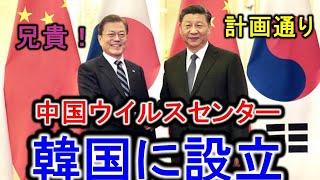 韓国の釜山に中国ウイルスセンターを設立するんだと?日本の対馬まで影響が。。。