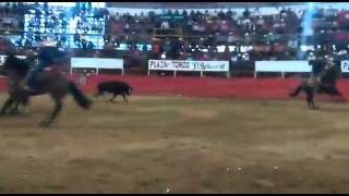 Puro Quechultenango (toro el Atleta)