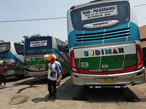 Kumpulan 3 Euro Bus Budiman Bisnis AC,Eksekutif Dan Super Eksekutif - MercedesBenz Asian Buses