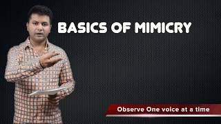 Basics of Mimicry by Sandeep Salwann