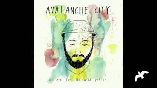 Wild Places II - Avalanche City