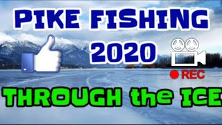 ICE FISHING 2020 NORTHERN PIKE