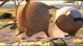 Толстые животные Мультфильмы приколы 2013 Забавные откормленные животные мультик про