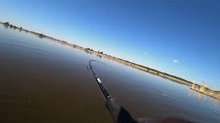 Они сгибают спиннинг в дугу! Вот это рыбалка вышла! Волшебная река! Рыбалка на спиннинг.