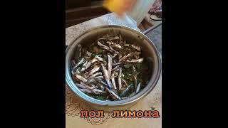 Тушенка из Хамсы! Знаменитое Черноморское Блюдо из Рыбы -Рецепт приготовления