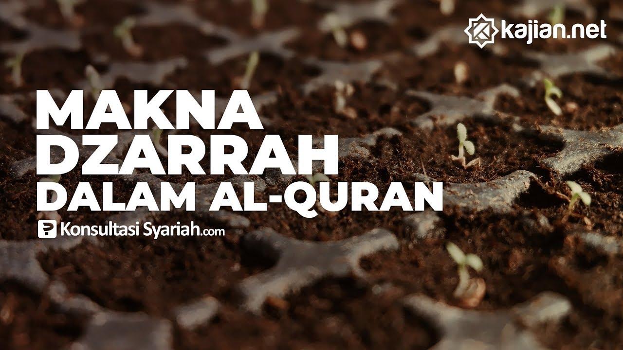 Inilah Makna Dzarrah Tafsir Surah Al Zalzalah Ayat 7 8 Konsultasi Syariah
