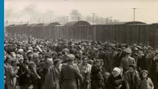 The deportation of Jews from Hungary and Lodz to Auschwitz Birkenau, 1944